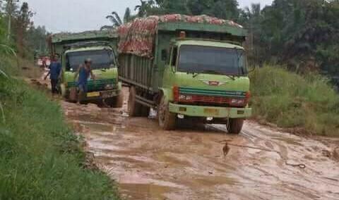 Setelah terjungkirnya mobil CPO PT BAM di RT 18 Desa Sungai Gelam, membuat perusahaan harap-harap cemas melihat kondisi jalan tersebut.