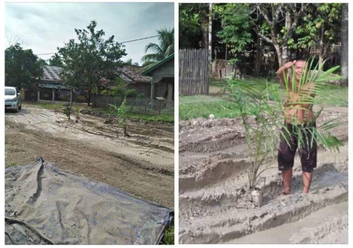 Warga Desa Jelatang dan desa lainnya di Kecamatan Pamenang, Kabupaten Merangin, Sabtu (29/08/2019) bisa bernafas lega. Pasalnya, jalan yang sempat ditanami sawit itu, sudah diperbaiki PT KDA.