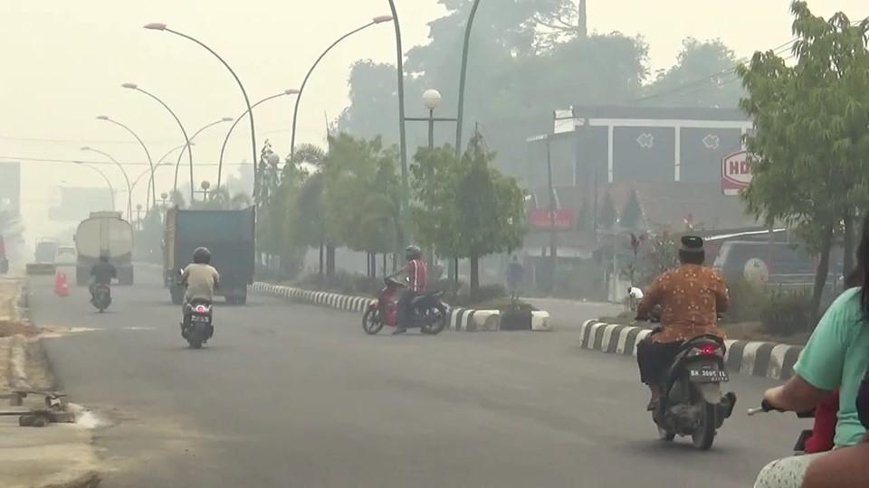 Kabut asap terpantau di Muaro Jambi dan beberapa titik di Kota Jambi, Jumat (16/08/2019) siang.