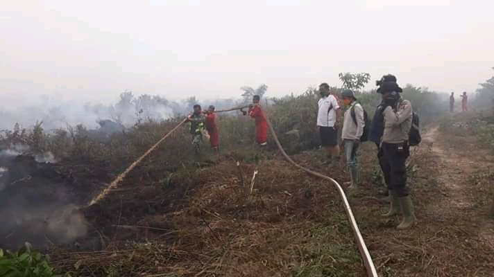 BERITA JAMBI Kasus Kebakaran Hutan dan Lahan di areal anak perusahaan Sinar Mas Group, bakal dilaporkan ke Kementrian lewat DPRD Provinsi.