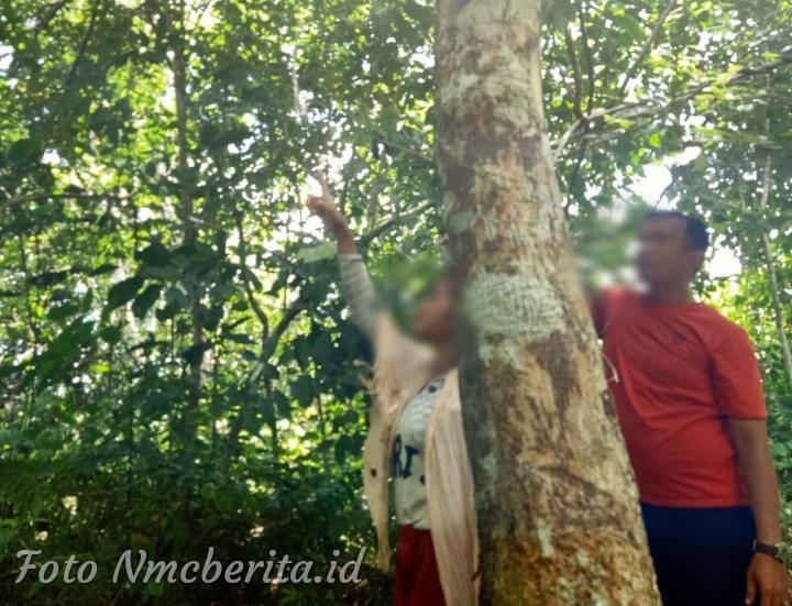 Pamit Ke Sungai, Suami Temukan Istri Tergantung di Pohon Karet