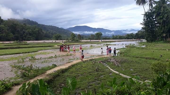 Tingginya intensitas hujan di daerah hulu membuat debit air meluap. Banjir bandang di Batang Asai, membuat akses jalan tak bisa dilalui.