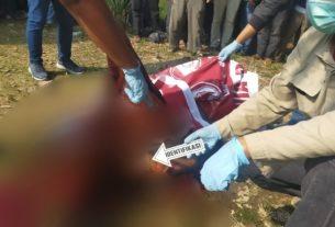 Berita Jambi Kito Diduga karena dihina buruh sawit, motif pembunuhan di Kumpeh dengan Egrek, alat dodos sawit.