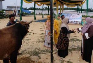 Bupati Muaro Jambi, Hj. Masnah Busro, Jumat (31/7), menyerahkan hewan qurban ke LPP Kelas IIB Jambi di Bukit Baling.