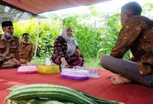 Sedianya di jadwalkan membagikan sembako di Desa Baru, Mestong, Bupati Muaro Jambi, Senin (14/12/20) mendadak datangi Sarjana komputer yang sukses jadi petani.