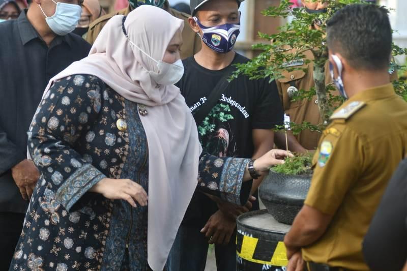 Bupati Muaro Jambi, Hj Masnah Busro, Senin (22/2/2021) sore membuka Pameran Bonsai di Desa Kasang Lopak Alai. Masnah mendorong, penggemar bonsai dapat berkumpul.