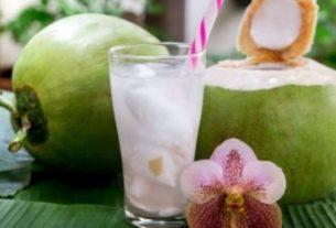 Selain rasanya yang menyegarkan, ternyata rajin minum air kelapa juga dapat mengusir penyakit loh. Mau tau apa saja? Baca selengkapnya di bawah ini.
